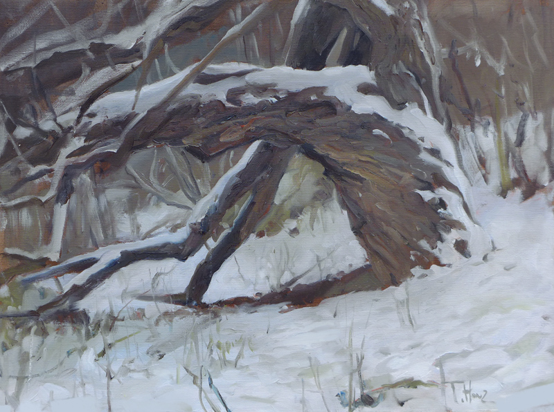 An Old Willow 2, oil on canvas,  60x45cm (24x18in)